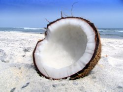 half a coconut on beach